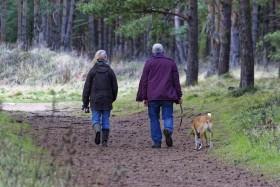 dog-walking-1070076_1280